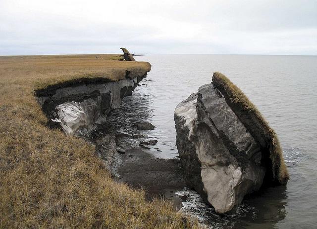 Un bloque de permafrost desprendido en la costa de Alaska. Foto: Benjamin Jones, USGS