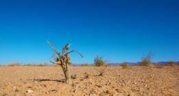 Noticias climáticas: Científicos advierten que los humanos estamos a punto de perder el control del cambio climático