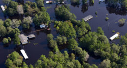 Noticias climáticas: La gran patronal europea se confabula contra la acción climática